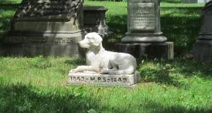 cimitero-animali-1