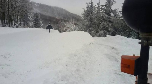 Neve 1