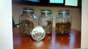 I barattoli di marijuana rinvenuti in casa