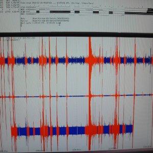 sismografo corriere
