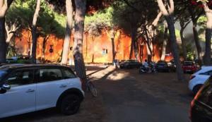 incendi toscana